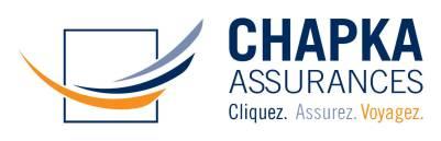 logo-chapka